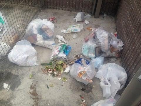 清掃前のゴミ置き場