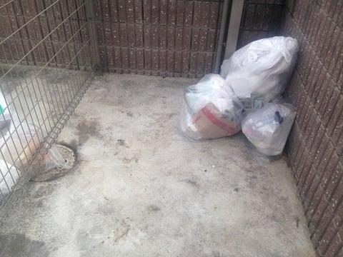 清掃後のゴミ置き場